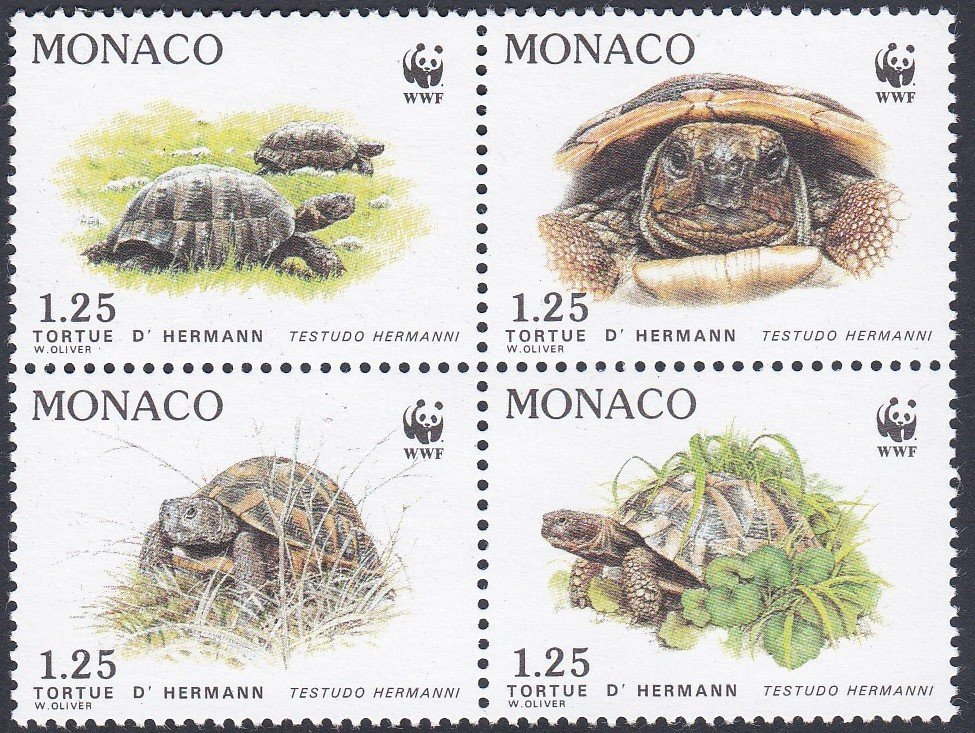 Block of 4 mint stamps of Monaco-Herman's Tortoise for World Wildlife Fund