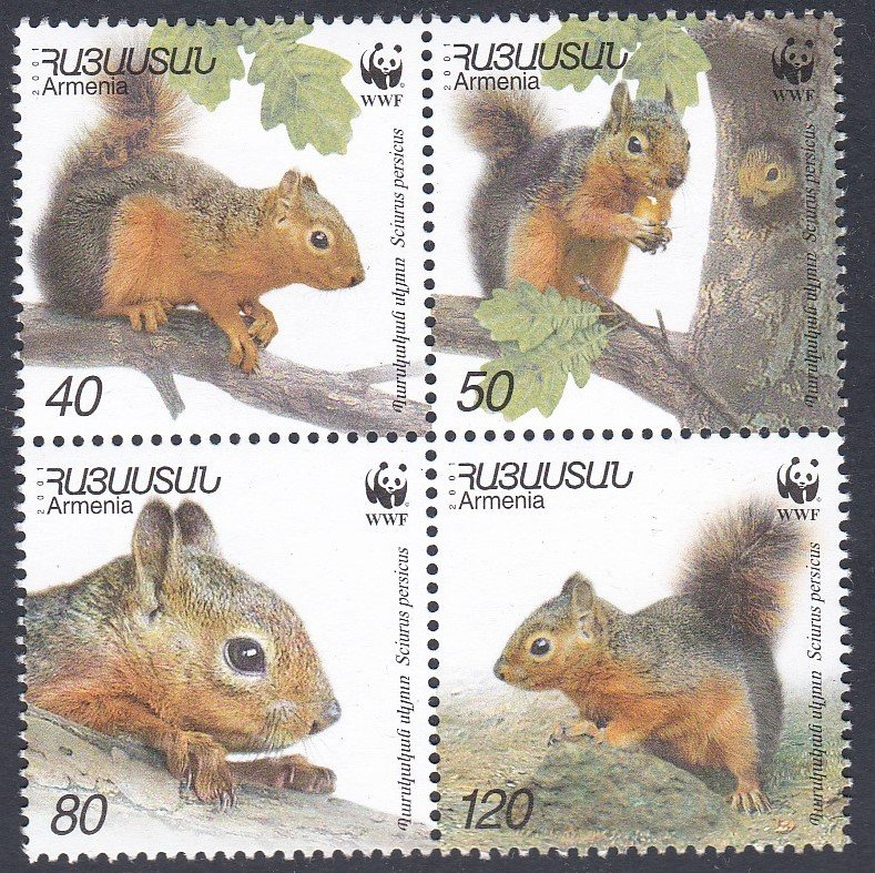 Block of 4 mint stamps from Armenia-Squirrels, for World Wildlife Fund