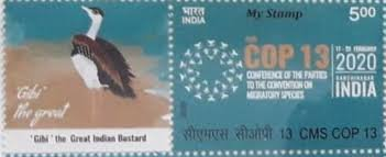 CMS COP 13 - My Stamp India