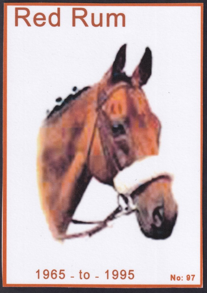 Red Rum card made by Jan Blatchley of Reading, Berkshire, UK.