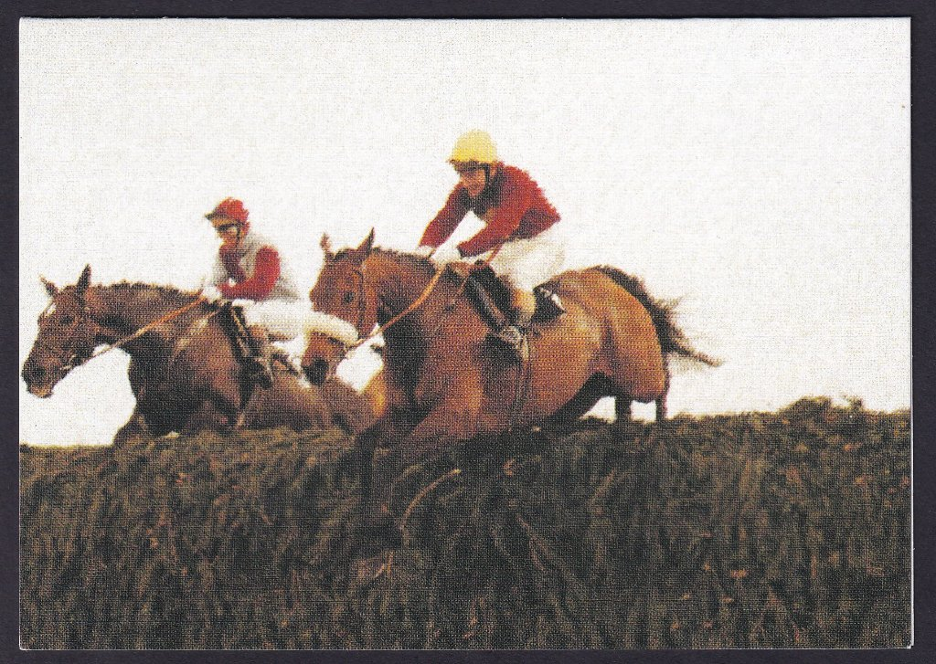 Red Rum, 1973, 1974 & 1977 Aintree Grand National winner in action in the yellow cap - Greeting card published by GDS Cards (Horse Racing Classics series 1950 - 1979)