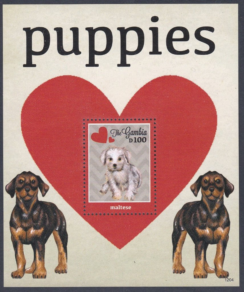 The Gambia Mint Miniature sheet-PUPPIES, a Maltese.